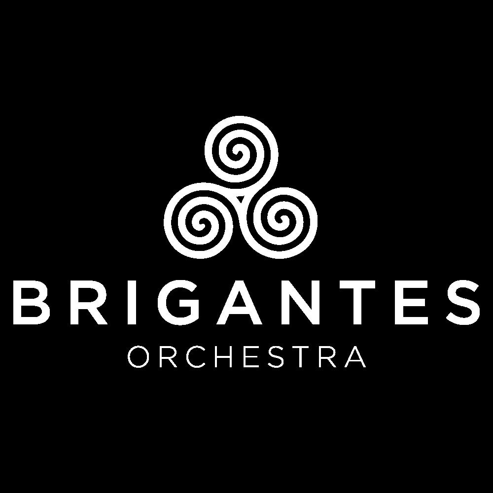 brigantes logo designer
